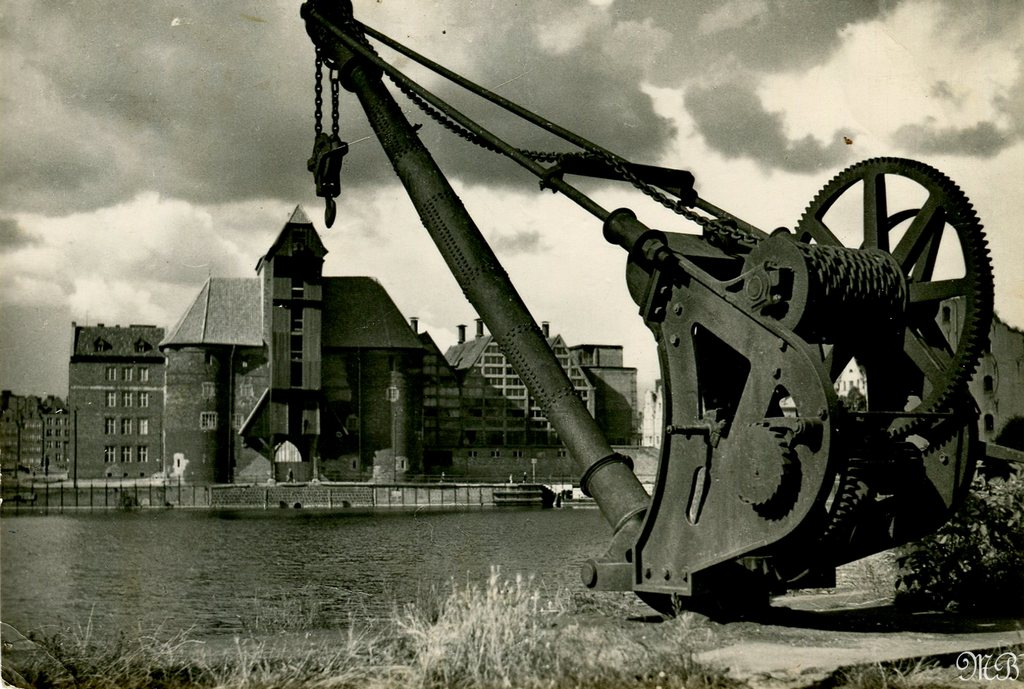 ZM1011E